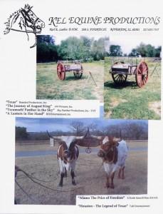 Cart0008